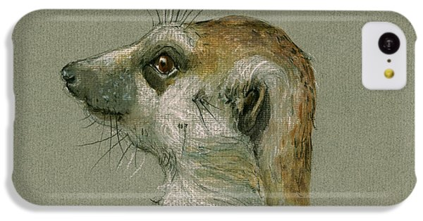 Meerkat Or Suricate Painting IPhone 5c Case