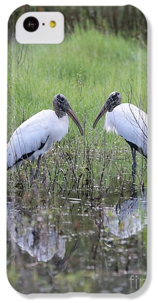 Meeting Of The Minds IPhone 5c Case by Carol Groenen