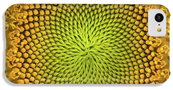 IPhone 5c Case featuring the photograph Mesmerizing by Bill Pevlor