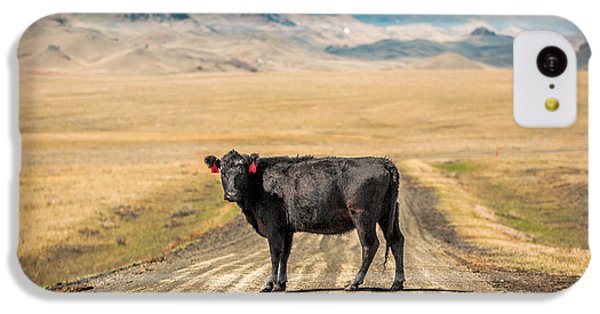 Cow iPhone 5c Case - Middle Of The Road by Todd Klassy