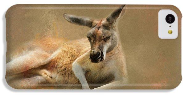 Monday Morning Drowsies Kangaroo Art IPhone 5c Case by Jai Johnson