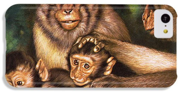 Monkey Family IPhone 5c Case