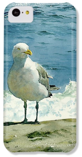 Montauk Gull IPhone 5c Case