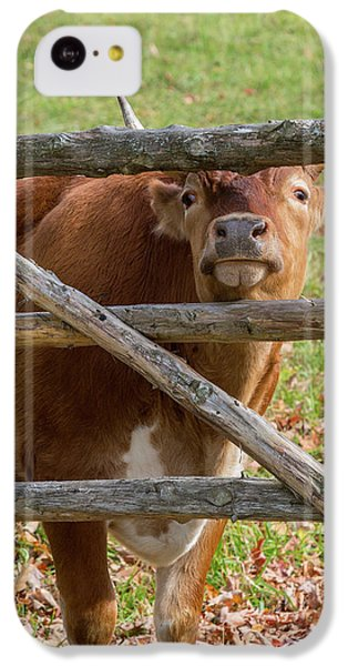 IPhone 5c Case featuring the photograph Moo by Bill Wakeley