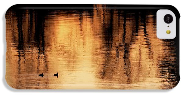 IPhone 5c Case featuring the photograph Morning Ducks 2017 by Bill Wakeley