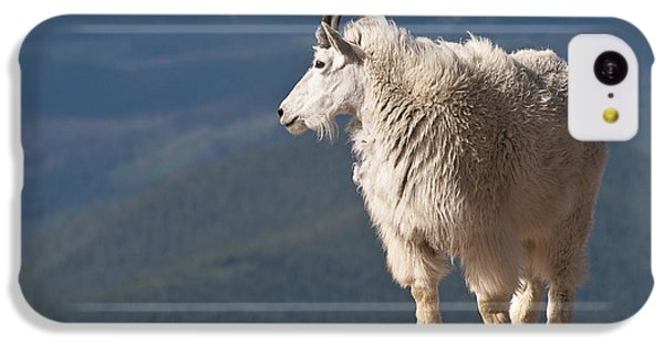 IPhone 5c Case featuring the photograph Mountain Goat by Gary Lengyel