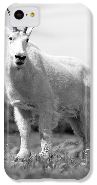 Mountain Goat IPhone 5c Case by Sebastian Musial