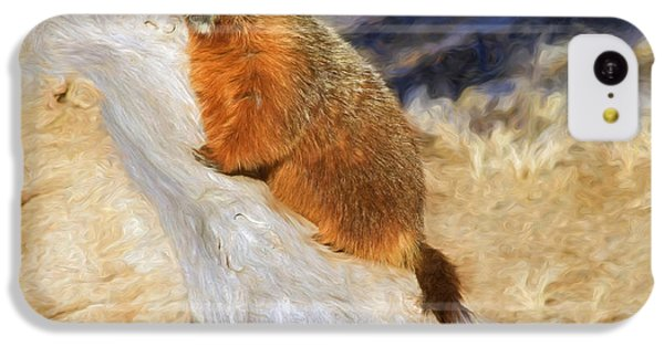 Groundhog iPhone 5c Case - Mountains To Climb by Donna Kennedy