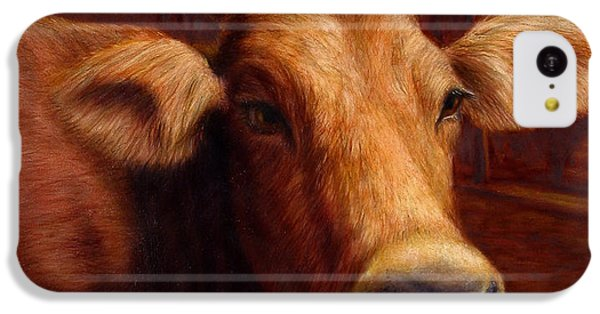 Cow iPhone 5c Case - Mrs. O'leary's Cow by James W Johnson