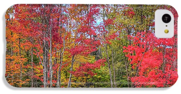 IPhone 5c Case featuring the photograph Natures Autumn Palette by David Patterson