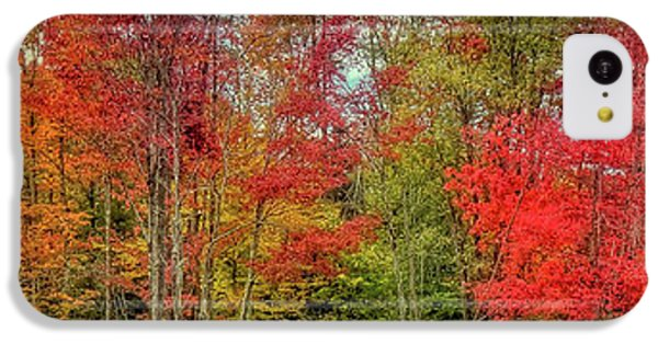 IPhone 5c Case featuring the photograph Natures Fall Palette by David Patterson