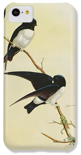 Nepal House Martin IPhone 5c Case by John Gould