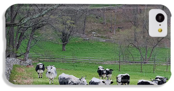 IPhone 5c Case featuring the photograph New England Spring Pasture Square by Bill Wakeley