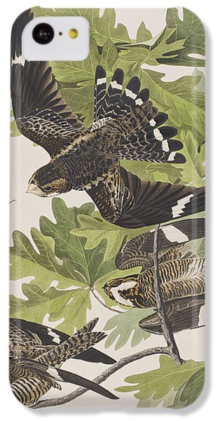 Night Hawk IPhone 5c Case by John James Audubon