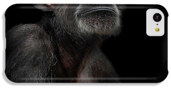 Noble IPhone 5c Case