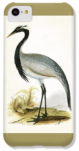 Numidian Crane IPhone 5c Case by English School