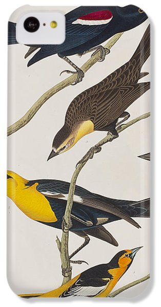 Starlings iPhone 5c Case - Nuttall's Starling Yellow-headed Troopial Bullock's Oriole by John James Audubon