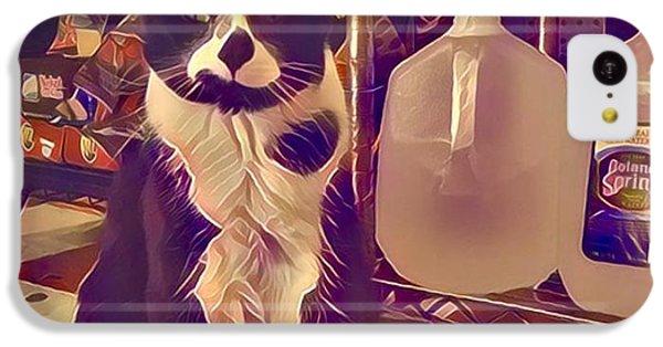 Nyc Bodega Cat IPhone 5c Case