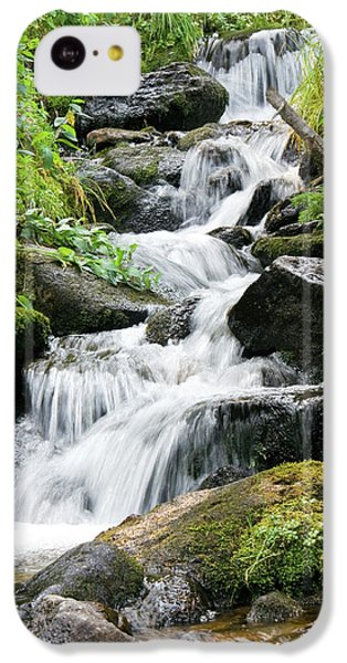Oasis Cascade IPhone 5c Case by David Chandler