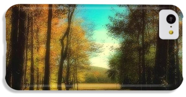 October Path IPhone 5c Case