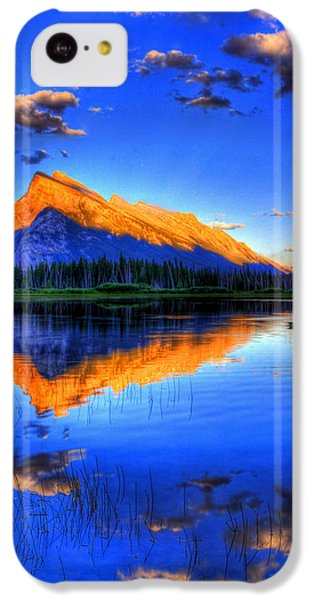 Of Geese And Gods IPhone 5c Case by Scott Mahon