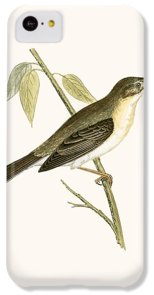 Olivaceous Warbler IPhone 5c Case by English School