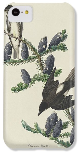 Flycatcher iPhone 5c Case - Olive-sided Flycatcher by Dreyer Wildlife Print Collections