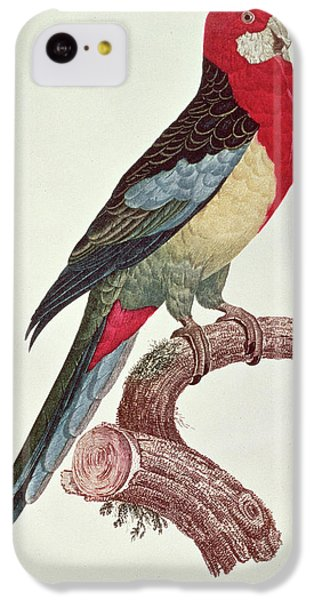Parakeet iPhone 5c Case - Omnicolored Parakeet by Jacques Barraband