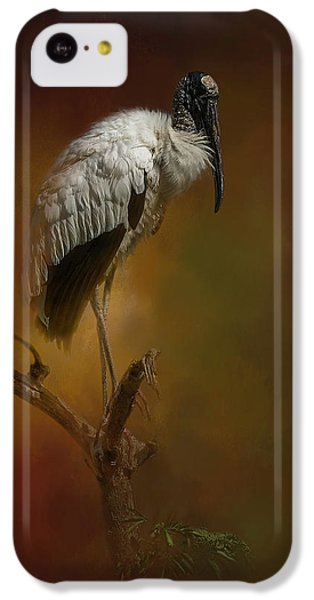 Stork iPhone 5c Case - On The Fork by Marvin Spates
