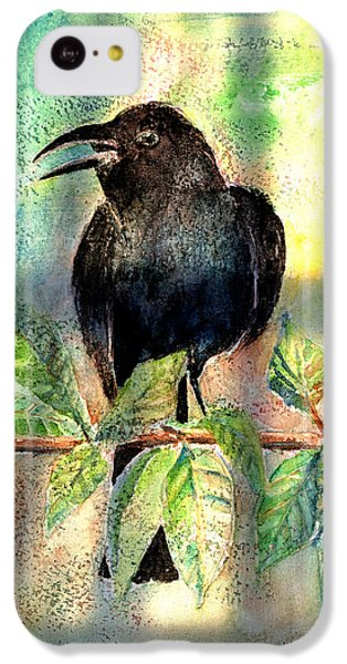 On The Outside Looking In IPhone 5c Case by Arline Wagner