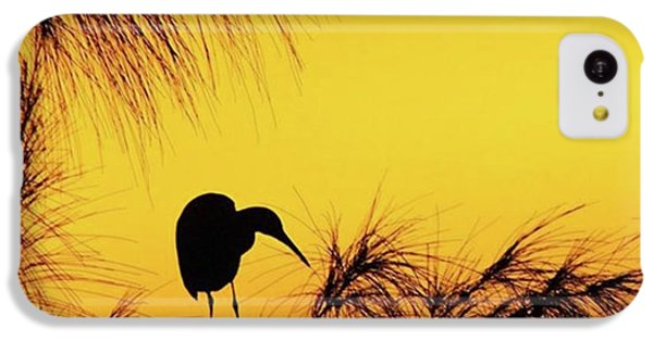 iPhone 5c Case - One Of A Series Taken At Mahoe Bay by John Edwards
