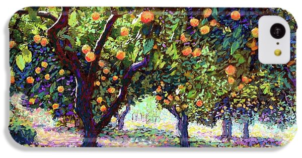 Orange Grove Of Citrus Fruit Trees IPhone 5c Case