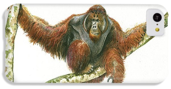 Orangutang IPhone 5c Case by Juan Bosco