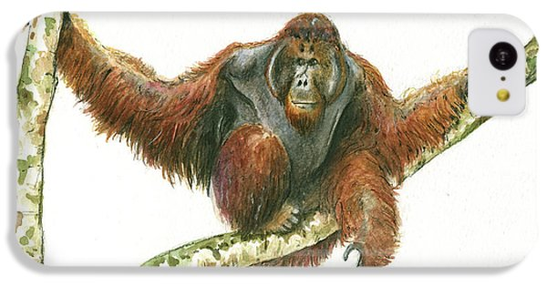 Orangutang IPhone 5c Case by Juan Bosco