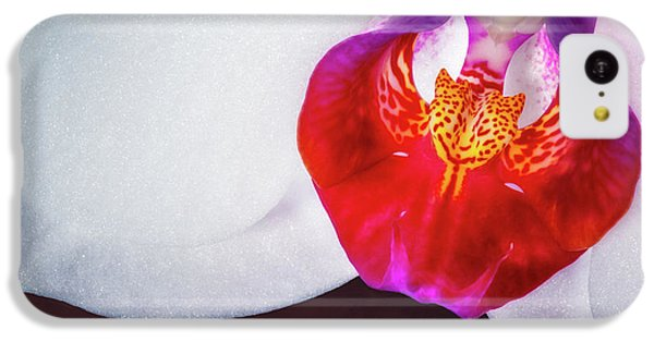 Orchid iPhone 5c Case - Orchid Up Close by Tom Mc Nemar