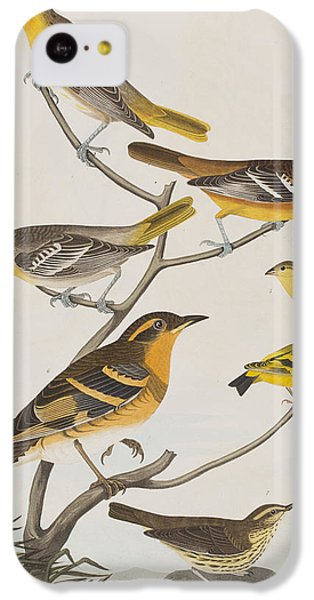 Orioles Thrushes And Goldfinches IPhone 5c Case by John James Audubon
