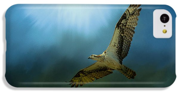 Osprey In The Evening Light IPhone 5c Case