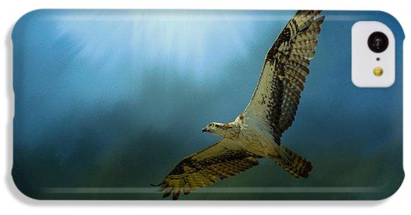Osprey In The Evening Light IPhone 5c Case by Jai Johnson