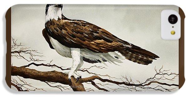 Osprey Sea Hawk IPhone 5c Case by James Williamson