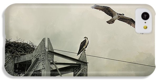 Ospreys At Pickwick IPhone 5c Case