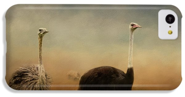 Ostrich Couple IPhone 5c Case by Jai Johnson