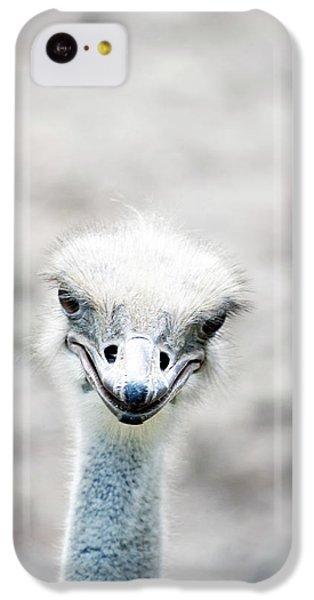 Ostrich IPhone 5c Case
