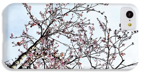 iPhone 5c Case - Overhead Branches by Julie Gebhardt