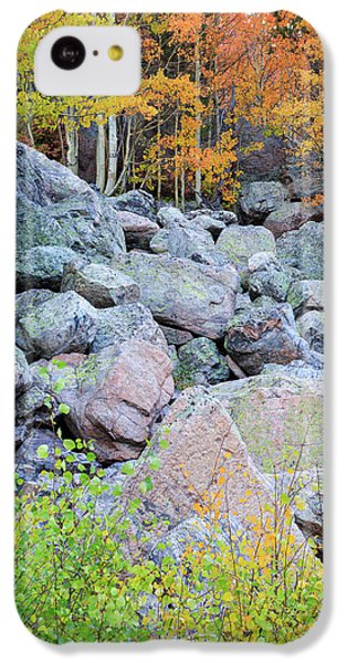 Painted Rocks IPhone 5c Case by David Chandler