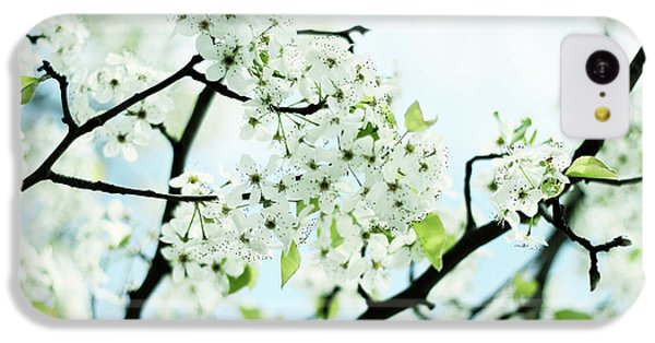 IPhone 5c Case featuring the photograph Pale Pear Blossom by Jessica Jenney