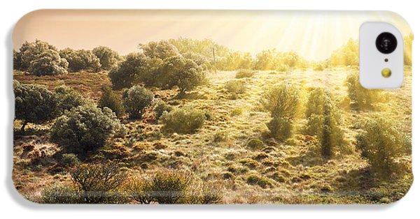 Beautiful Sunrise iPhone 5c Case - Pasturing Horse by Carlos Caetano