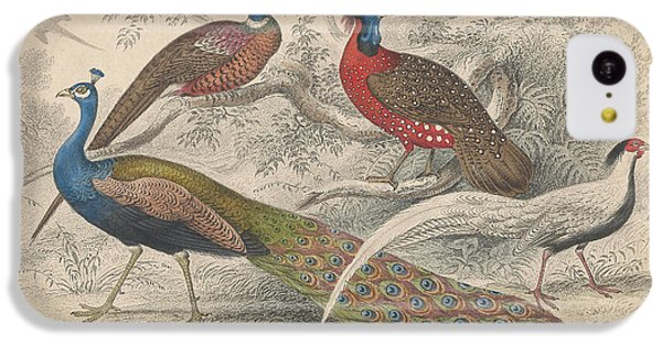 Peacocks IPhone 5c Case by Rob Dreyer