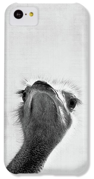 Ostrich iPhone 5c Case - Peekaboo Ostrich by Delphimages Photo Creations