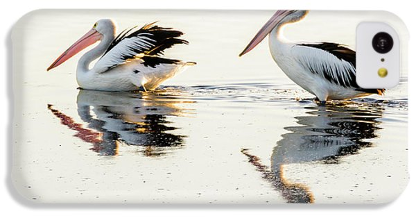 Pelicans At Dusk IPhone 5c Case by Werner Padarin