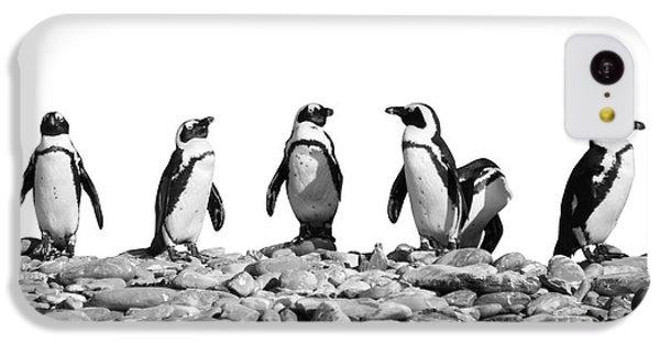 Penguins IPhone 5c Case by Delphimages Photo Creations